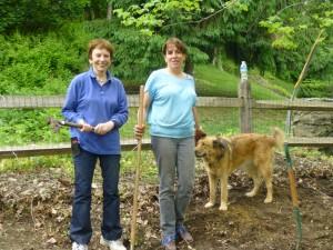 May 2014 --Hazel and Jill take a well-earned break