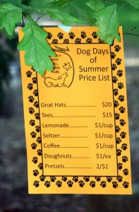 DogDays price list