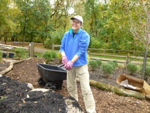 Karen Hinckley takes a photo break from mulch spreading