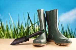 garden boot clip art