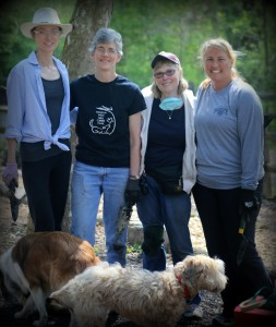 L to R, Michelle Detwiler, Ellen Briggs, Ellen Reese and Melissa O'Connor pause for photo op in May 2015 marathon planting of 450 Blue Wood Sedge.